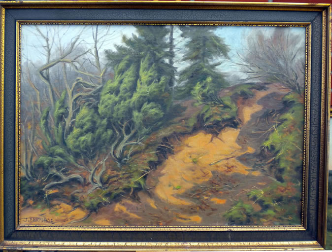 Forest Scene with small gap - J. Bernhof